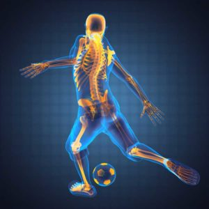 Orthopaedic Specialists of Connecticut provides comprehensive orthopaedic care.